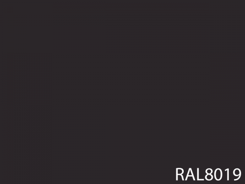 RAL 8019