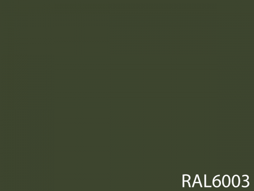 RAL 6003