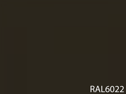 RAL 6022