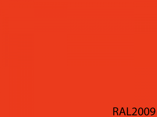 RAL 2009