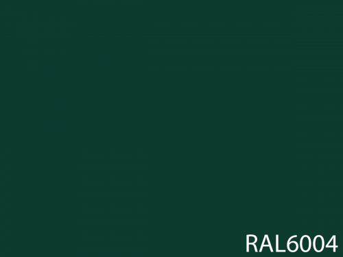 RAL 6004