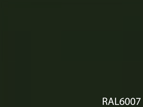 RAL 6007
