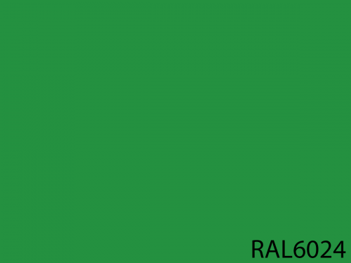 RAL 6024