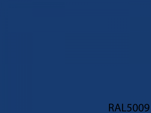 RAL 5009